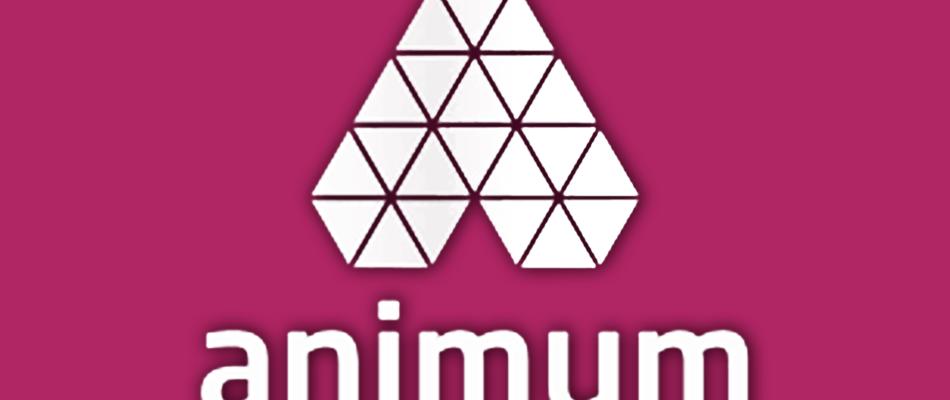 animum maldon agencia digital malaga